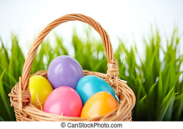 Eggs in basket - Image of colored Easter eggs in basket