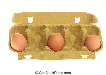 eggs in box isolated