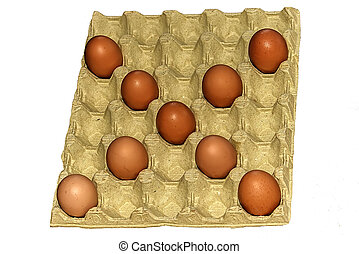 Eggs in cardboard cofrag