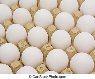 Eggs in carton with clipping path