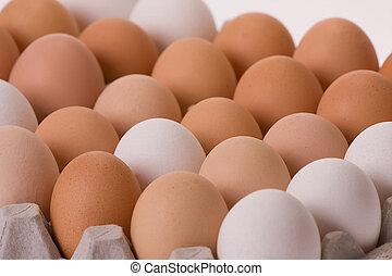 eggs in egg carton on white background