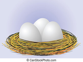 eggs in nest - vector