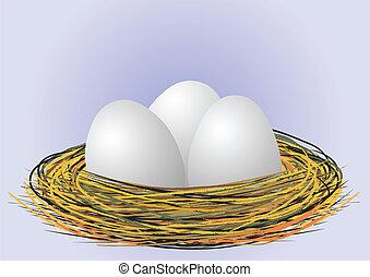 eggs in nest - vector - Eggs in the nest - vector