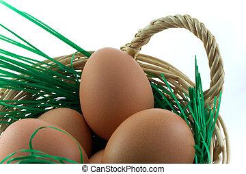 eggs in punnet
