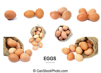 Eggs isolated on white background.