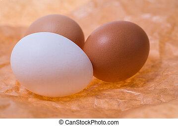 Eggs on a gray background
