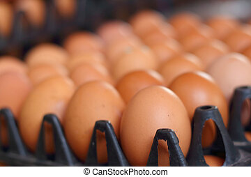Eggs on a tray on the market
