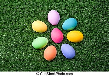 Eggs on grass