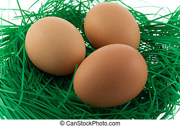 eggs on green straw