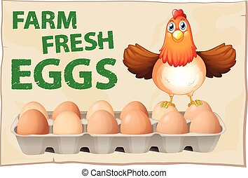 Eggs poster - Farm fresh eggs poster with chicken