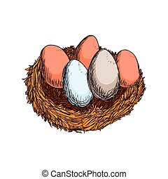 eggs sketch farm healthy food icon. Vector graphic