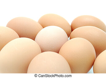 eggs - set of eggs