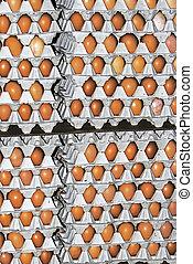 Eggs stored 1