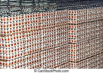 Eggs stored 3