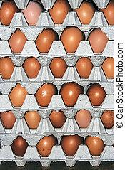 Eggs stored 5