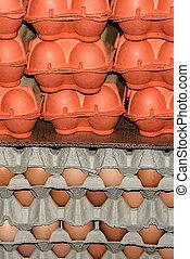 Eggs stored 7