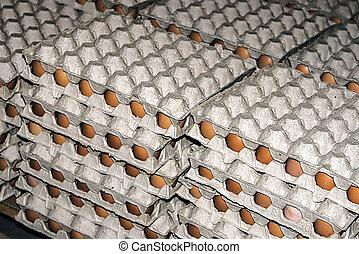 Eggs stored 8