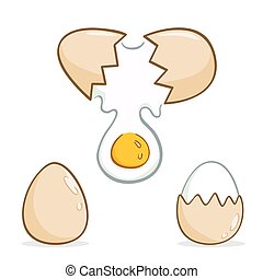 Eggs - Vector illustration of various eggs