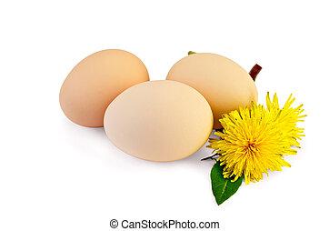 Eggs with dandelions