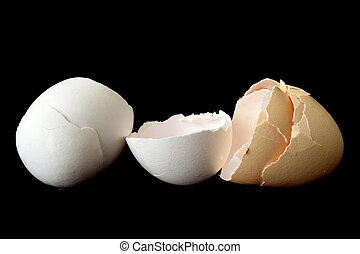Eggshell - an eggshell on black background