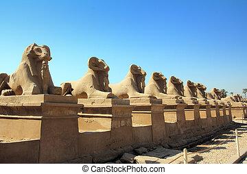 egipto, estatuas, de, esfinge, en, karnak, templo