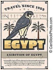 egito, falcão, pássaro, antiga, horus