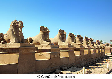 egitto, statue, di, sfinge, in, karnak, tempio