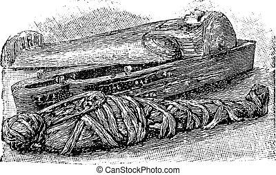 egiziano, mummia, (british, sarcofago, engraving., museum), vendemmia