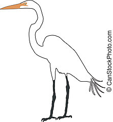 egret, śnieżny