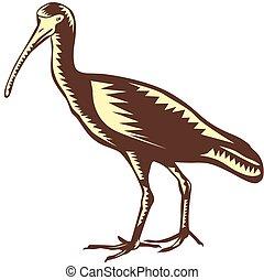 Egret Heron Crane Side Woodcut - Illustration of a egret...
