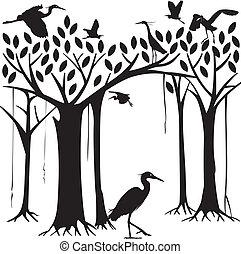 egrets, si, banyan drzewo, las