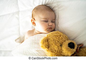 egy, 4, hónap, csecsemő, alvás, képben látható, egy, fehér, ágy, otthon, noha, hord