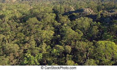 egy, antenna vadászterület, közül, hegyek, és, erdő