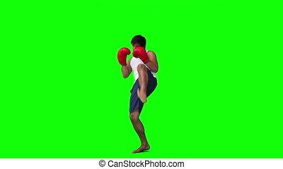 egy, ember, gyakorló, kickboxing
