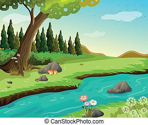 egy, folyó, -ban, a, erdő