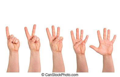egy, fordíts, öt, ujjak, számol, kezezés gesztus,...