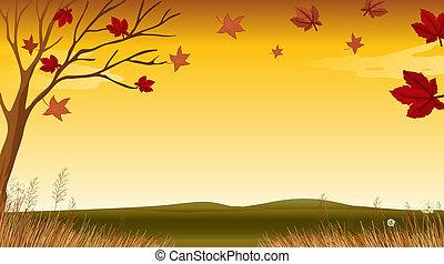 egy, kilátás, közül, egy, ősz