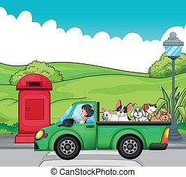 egy, zöld, jármű, noha, kutyák, -ban, a, hát