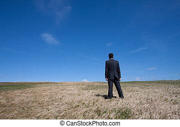 egyedül, -ban, a, mező