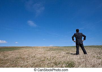 egyedül, mező