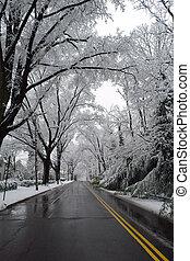 egyenáram, washington, tél