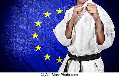 egyesítés, karate, lobogó, vadászrepülőgép, európai