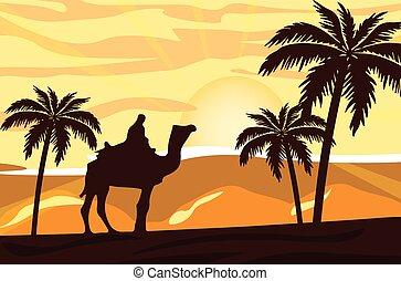 egyiptomi, napnyugta, ember, teve