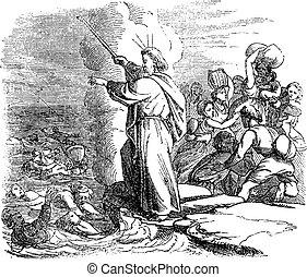 egyiptomi, vízbe fulladt, átkelés, biztosan, rajz, bibliai, tenger, ólmozás, piros, szüret, át, israelites, mózes, sztori, hadsereg