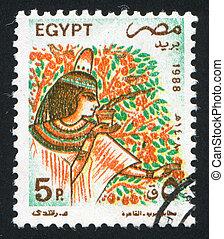 Woman and tropical tree - EGYPT - CIRCA 1988: stamp printed ...