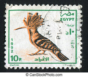 Egyptian hoopoe - EGYPT - CIRCA 1992: stamp printed by...