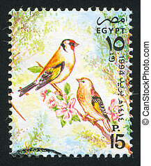 Goldfinch - EGYPT - CIRCA 1994: stamp printed by Egypt,...