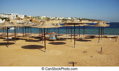Egypt, Empty Sunny Beach with Umbrellas, Sun Beds on the Red Sea