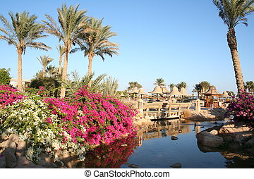 Egypt. Resort