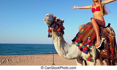 Egypt tourism with camel riding back for young woman - Egypt...